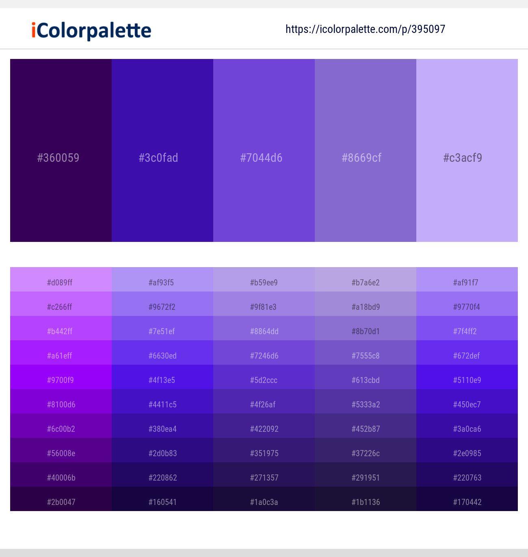 indigo color - Google Search in 2020 | Violet color ...