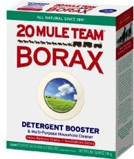 One Box Borax Can Used Clean Almost Anything Around The House And Takes Very