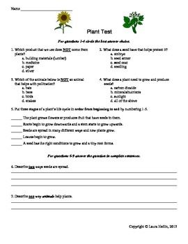Plant TestAssessment Rd Th Th A Summative Assessment For A