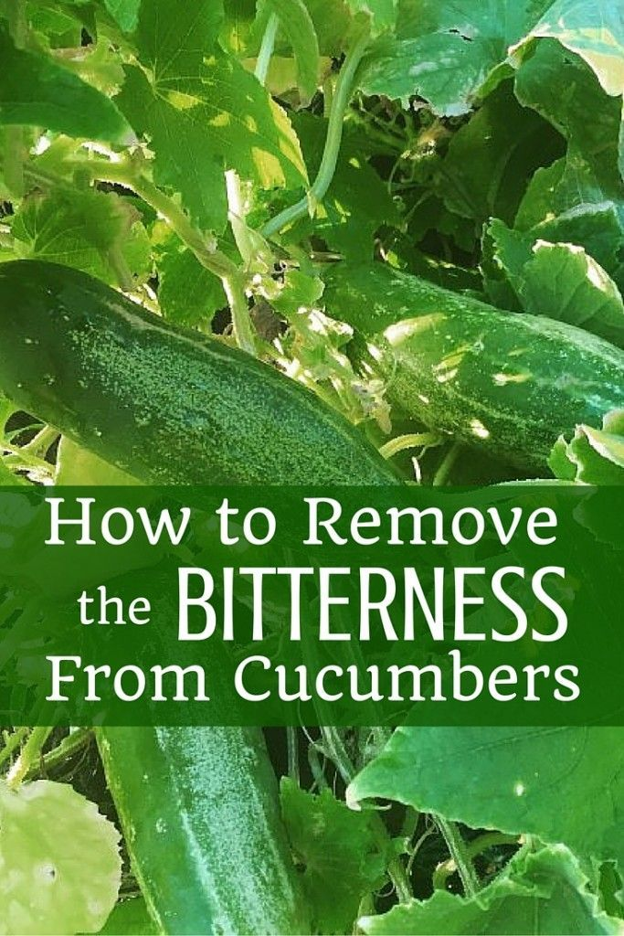 How To Remove The Bitterness From Cucumbers Bitter 400 x 300