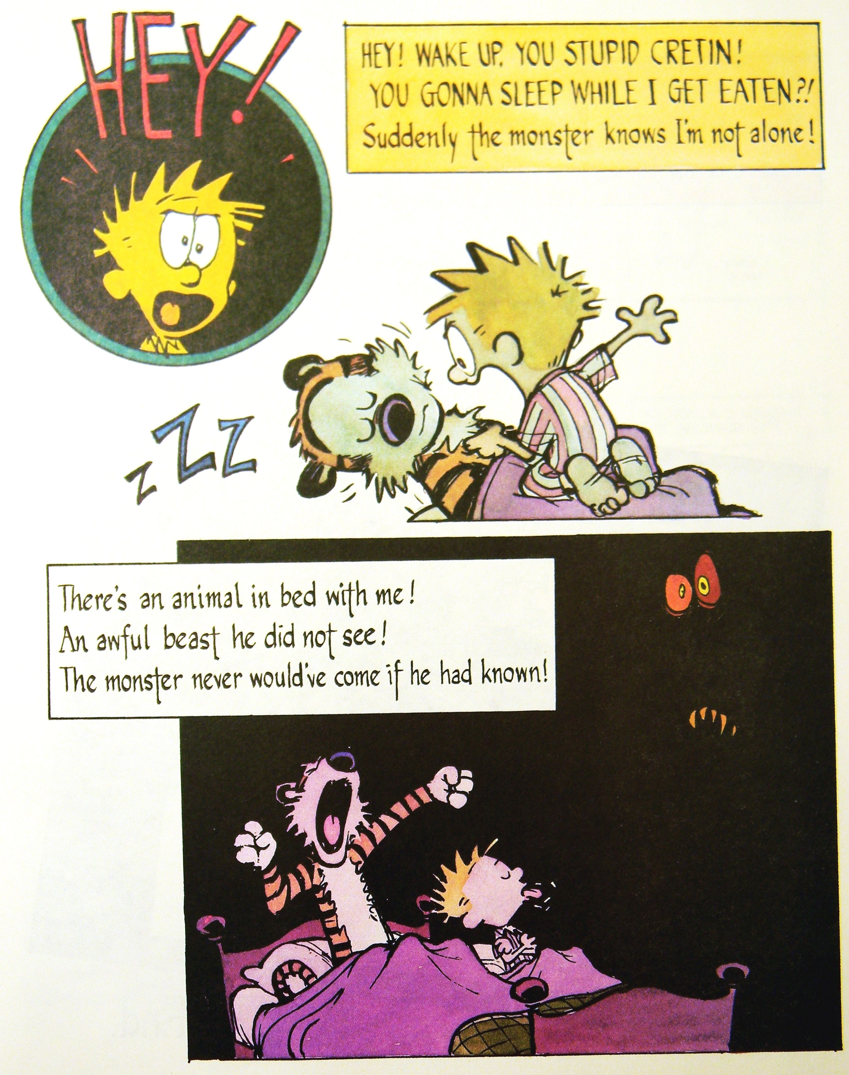 Calvin and Hobbes A Nauseous Nocturne 11 Hey Wake up you stupid