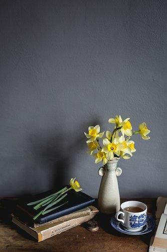 daffodil morning | Amanda Nolan Booker Photography