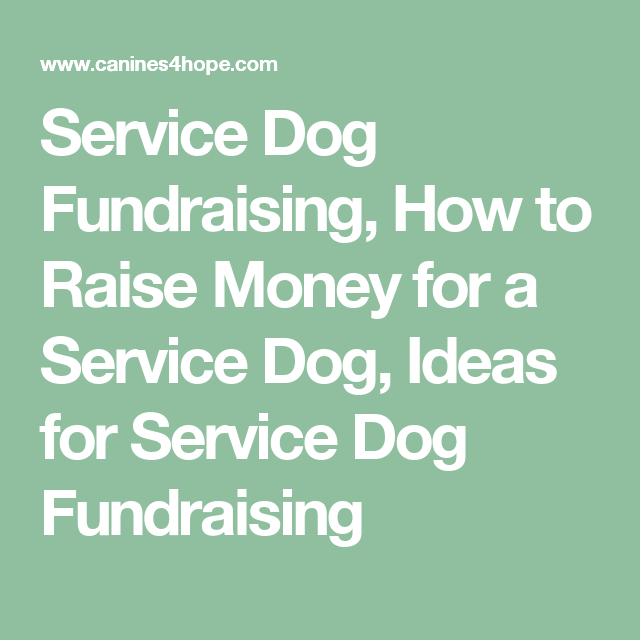 Service Dog Fundraising How To Raise Money For A Service Dog Ideas For Service Dog Fundraising Dog Fundraiser Service Dogs How To Raise Money