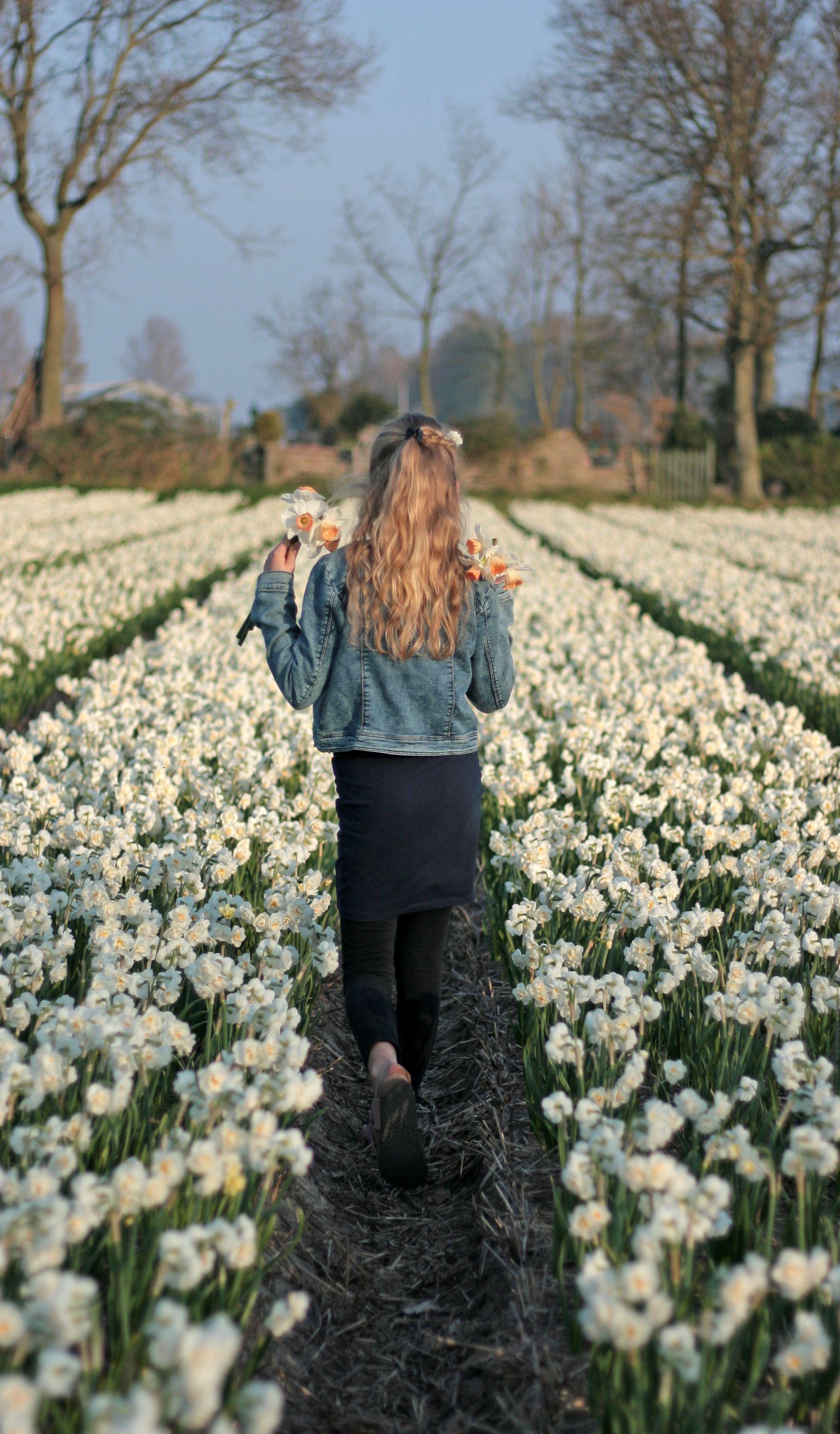My lLittle girl walking in endless fields of daffodils