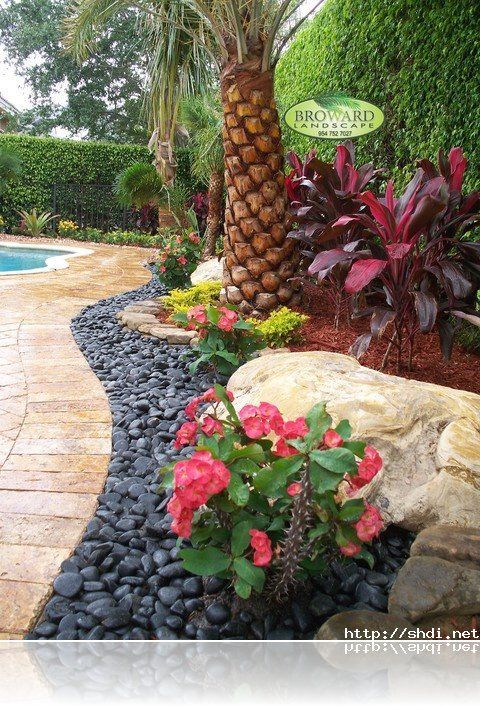 Tropical front yard landscaping ideas with palm trees for Idea de deco garden rockery