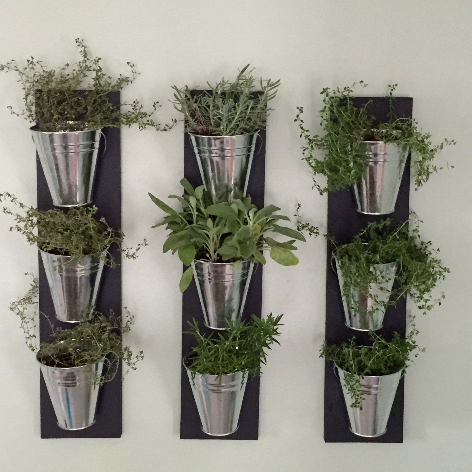 Amazonsmile Indoor Wall Planter Kitchen Dining Herb 400 x 300