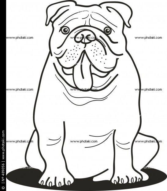 ilustración de bulldog para colorear | Animals | Pinterest ...