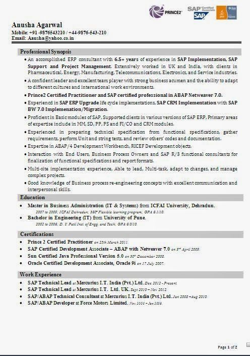 Sap Abap Resume Sample Glamorous Best Marketing Resume Sample Template Example Ofexcellent Curriculum .