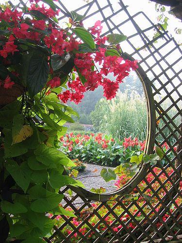 the gardens at the Biltmore Estate | travels | Pinterest | Biltmore ...