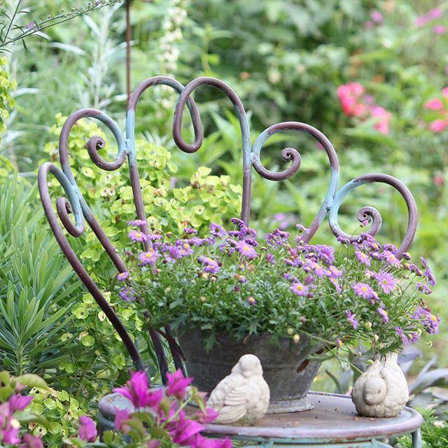 Garden Garten Tuin Have Tradgard Jardin Gartendeko Mygarden All Gardens Spanischesganseblumchen Cottage Garden Purple Garden Container Flowers
