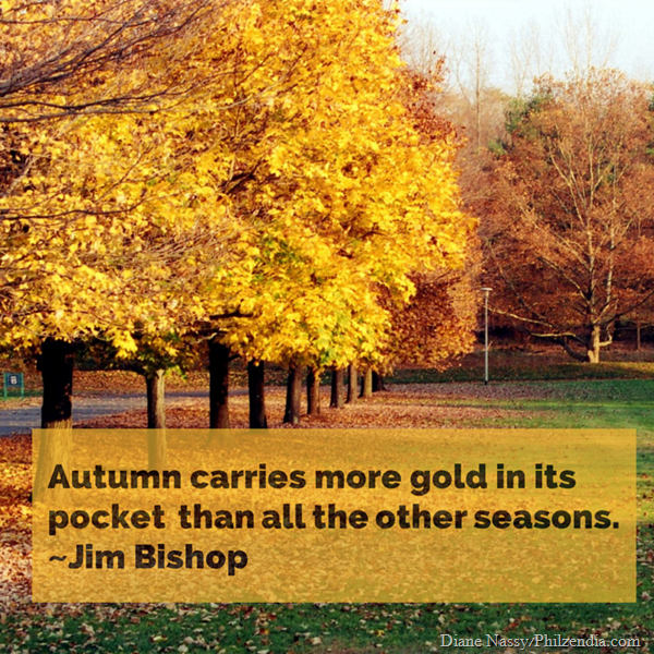Captivating Quotes About Autumn   U0027Autumn Carries More Gold In Its Pocket Than All The  Other