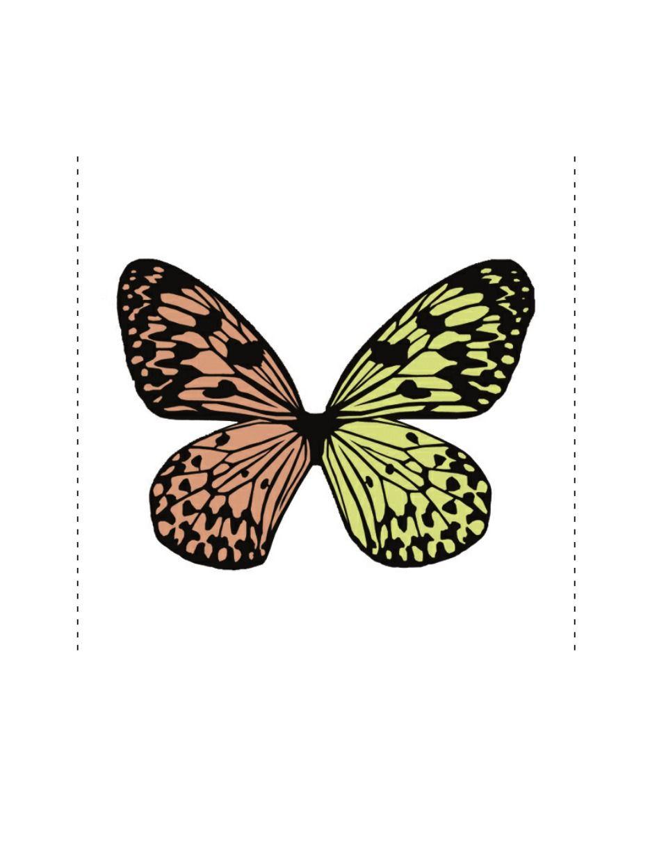 Regala una Mariposa | Pinterest | Mariposas de papel, Mariposas y ...
