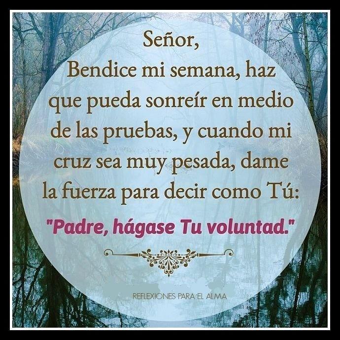 Señor Bendice Mi Semana Oraciones Oraciones Para El Alma Dios