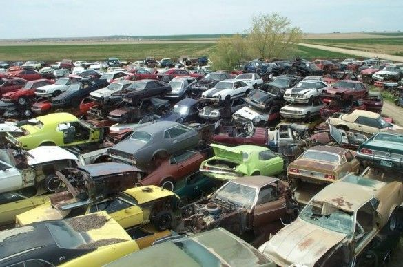 Largest Mustang Photos World S Largest Ford Mustang Salvage