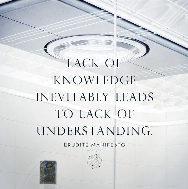 Insurgent quote.