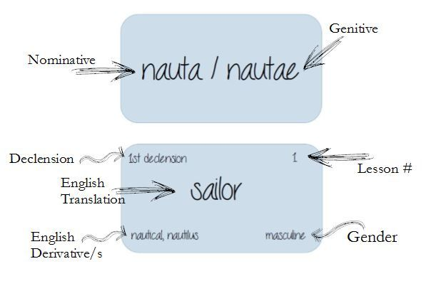 Latin Flash Card With Labels Classical Conversations