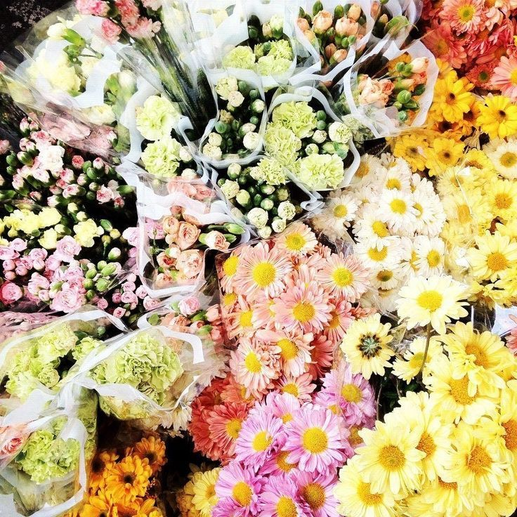 Pin by ilove flowers on 9 flowers columbia road flower