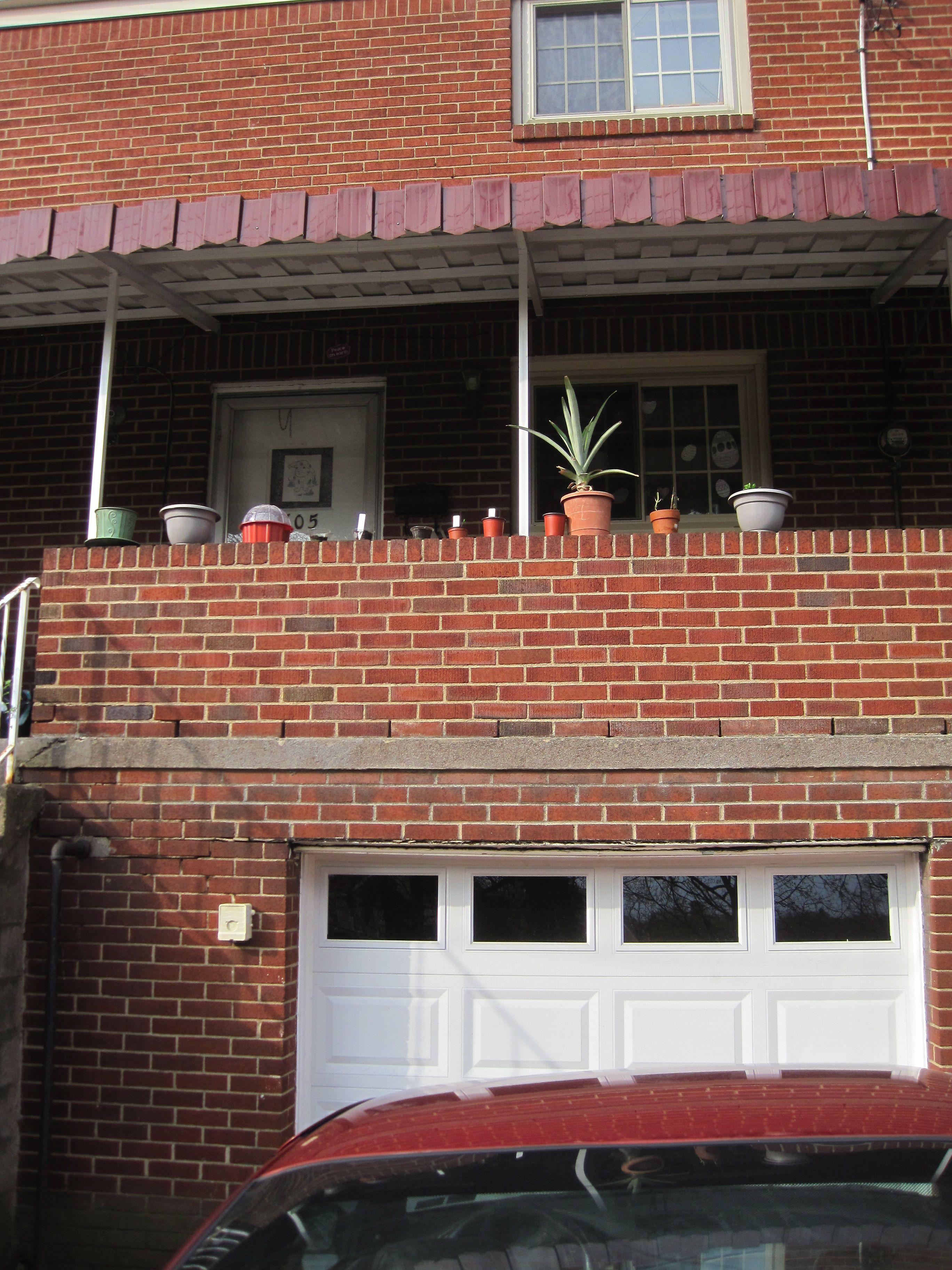 Seedlings growing in pots in a row. Pineapple plant seems happy to ...