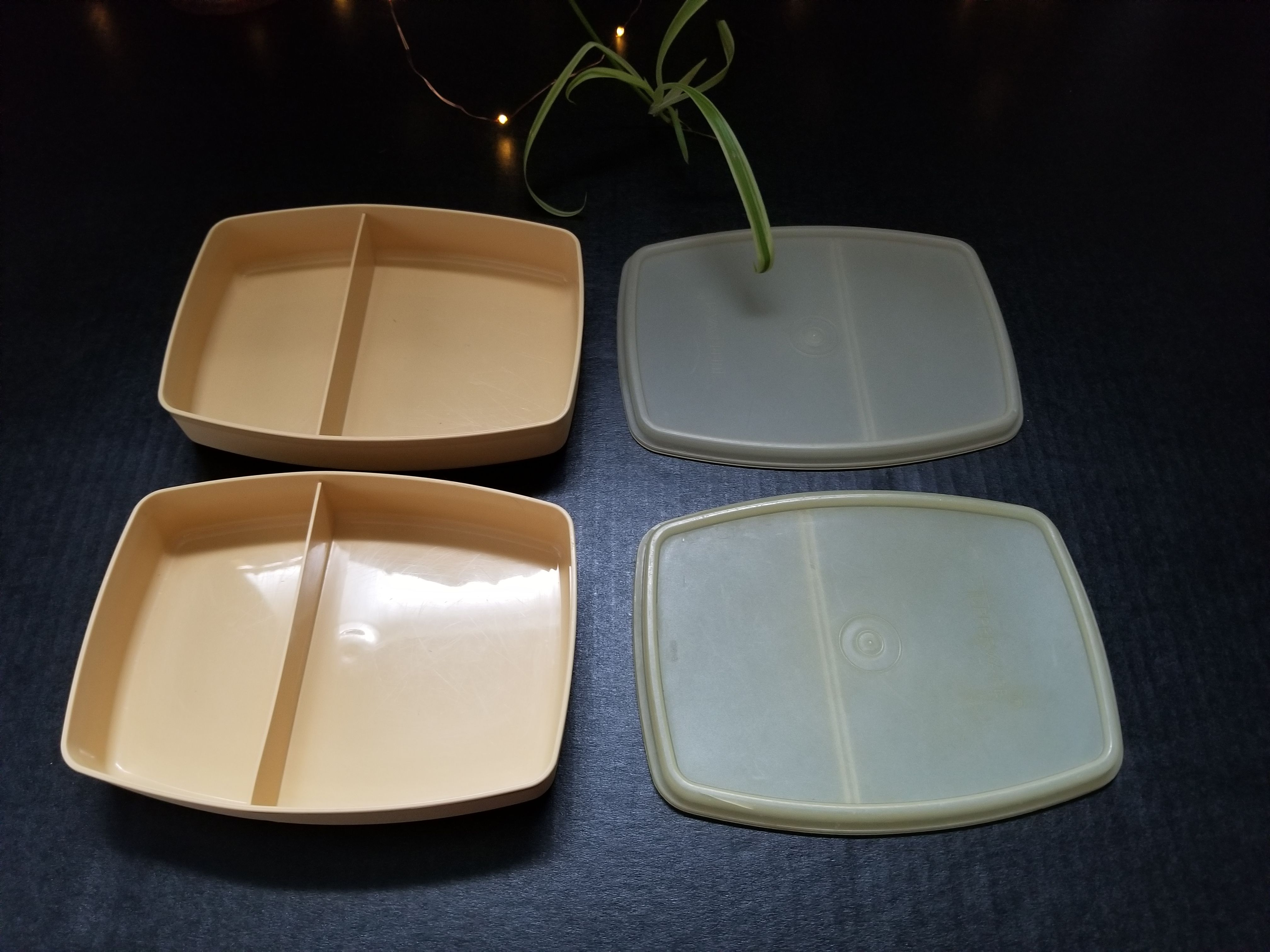 Great vintage tupperware lunch boxes. Sandwich and snack