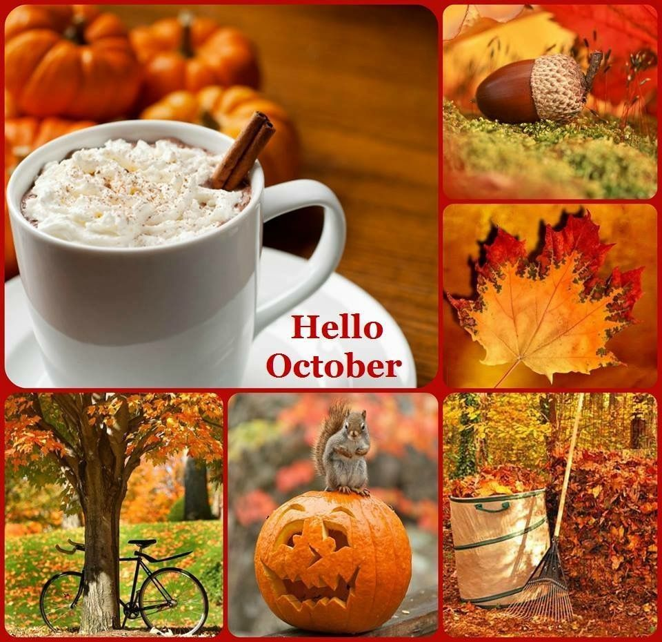 Autumn hello October collage inspiration colors photography