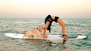 Image result for SUP yoga