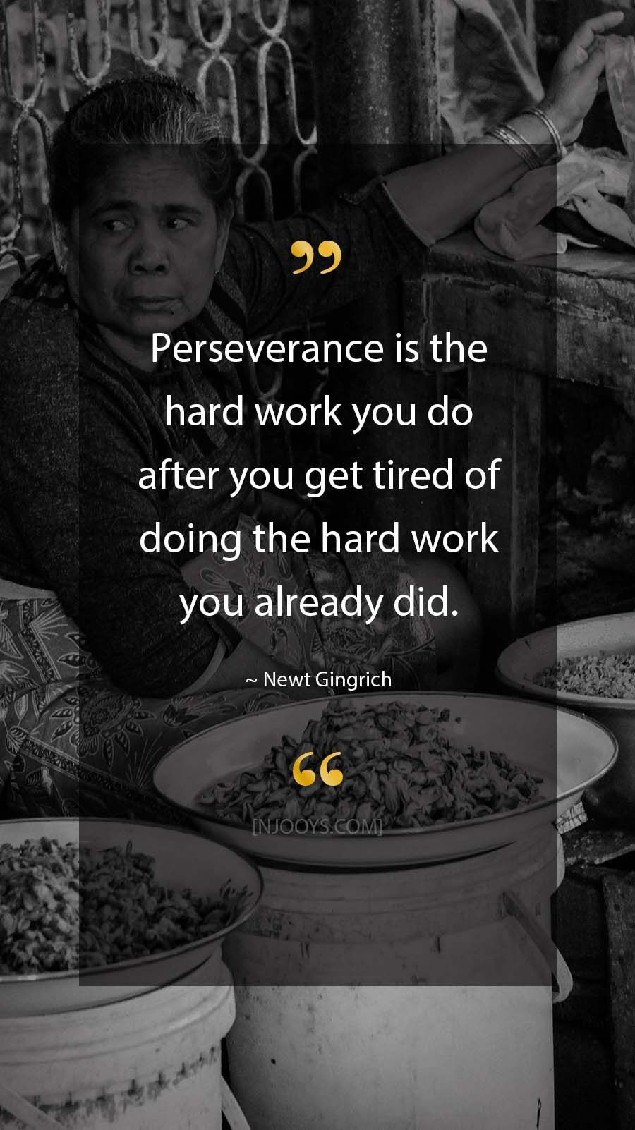 Newt Gingrich Quotes. Perseverance is the hard work you do