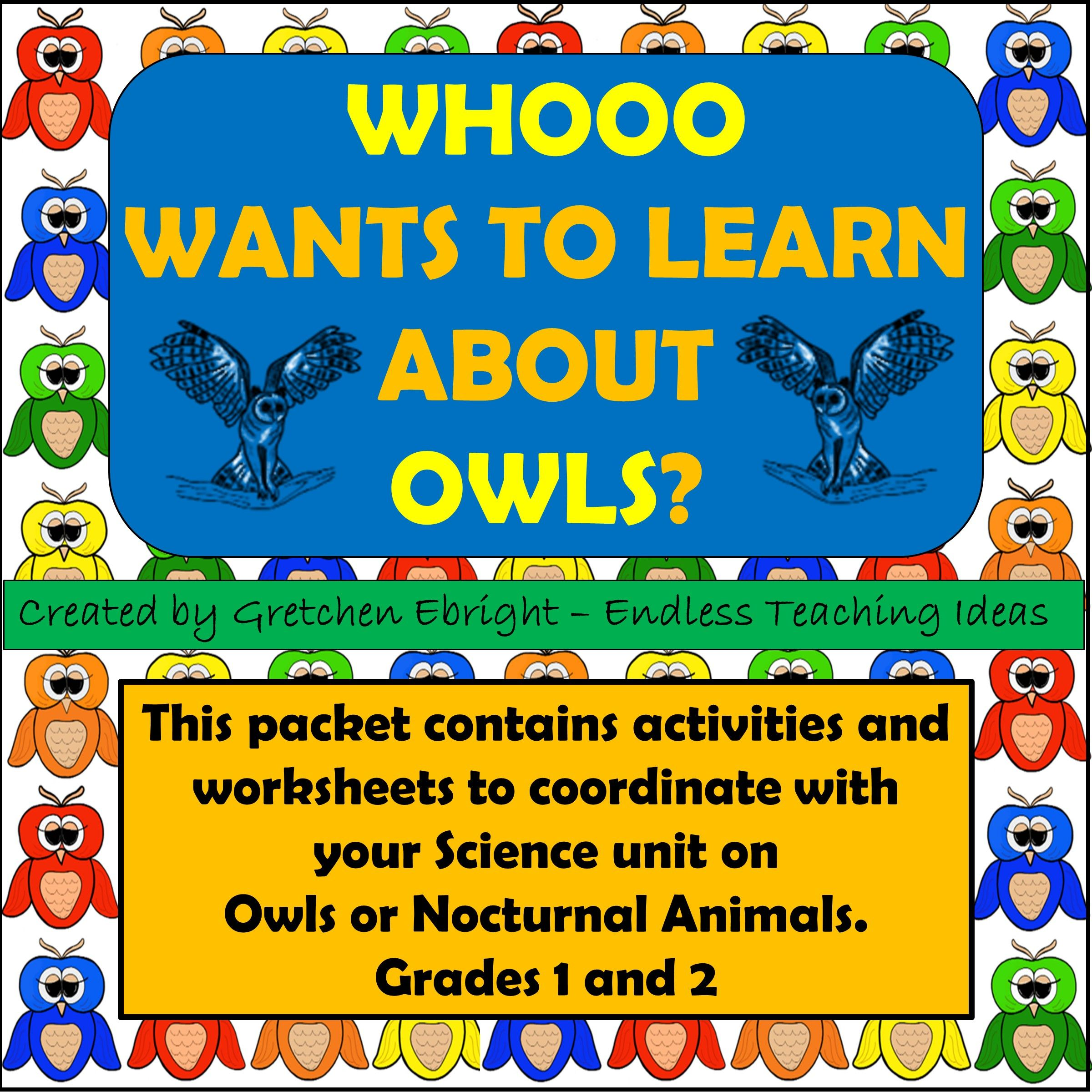 Whooo Wants To Learn About Owls