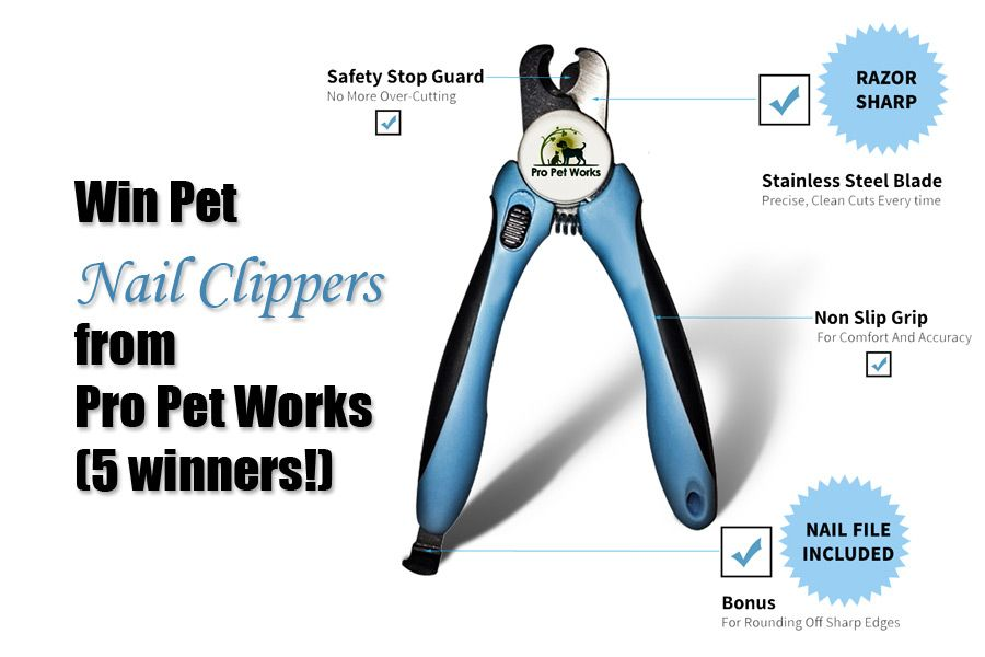 Win Pro Pet Works Pet Nail Clippers! (5 winners!) | pet