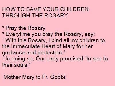 41++ My complete rosary prayer book aquinas press ideas in 2021