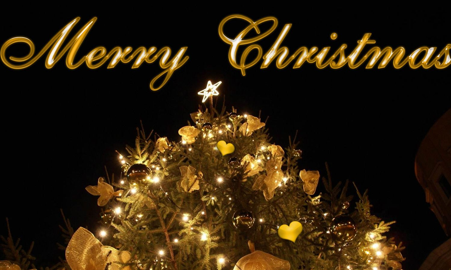 Muslims And Merry Christmas Wishes Merry Christmas Pictures Merry Christmas Images Merry Christmas Greetings