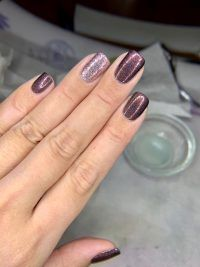 Chocolate Slate - Rich Chocolate Brown Holographic