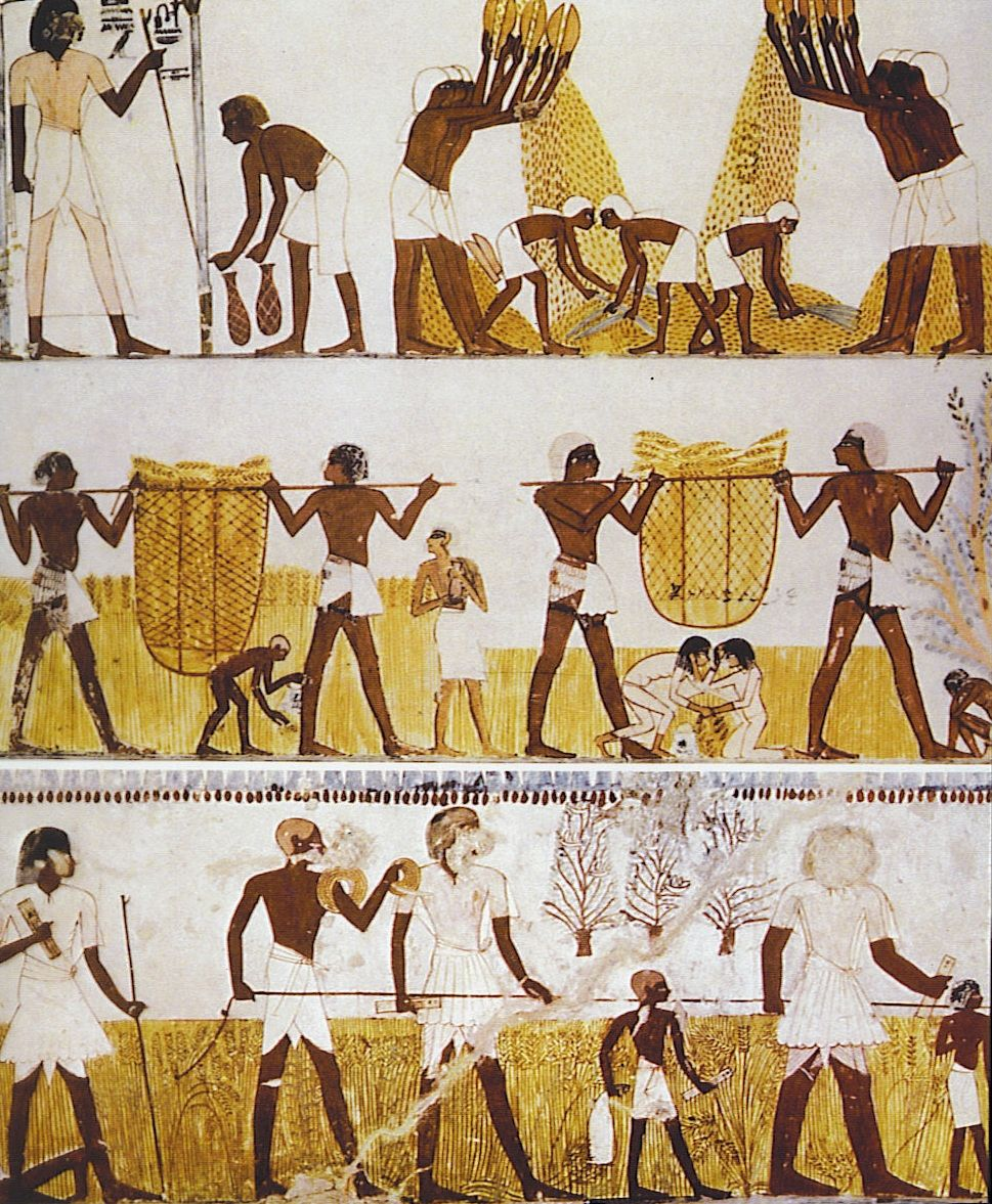 an analysis of the role of slaves in the ancient egyptian civilization The role of slavery in ancient egyptian society slavery in ancient egypt: the enslavement, the theory and practice of egyptian slavery were.