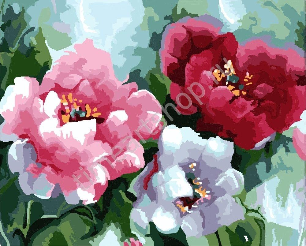 Бархатное цветение, картины раскраски по номерам, размер ...