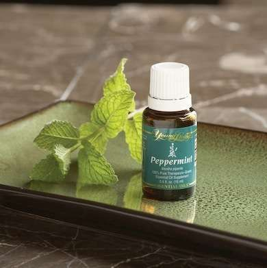 Bob's Tip of the Day: To make a sprayable ant deterrent, mix two to three tablespoons of peppermint oil with a quart of water. Spray liberally around the ants' points of origin, making sure to hit all the nooks and crannies.
