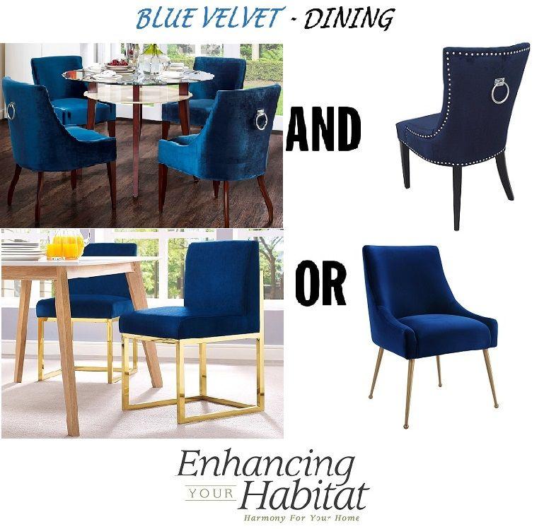 Blue velvet dining chair options/1 | Singing the Blues | Pinterest ...