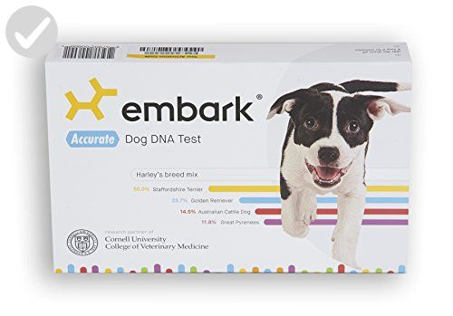 Embark Dog DNA Test · Breed Identification · 160 Health Results · 200K Genetic Markers - For our pretty pets (*Amazon Partner-Link)