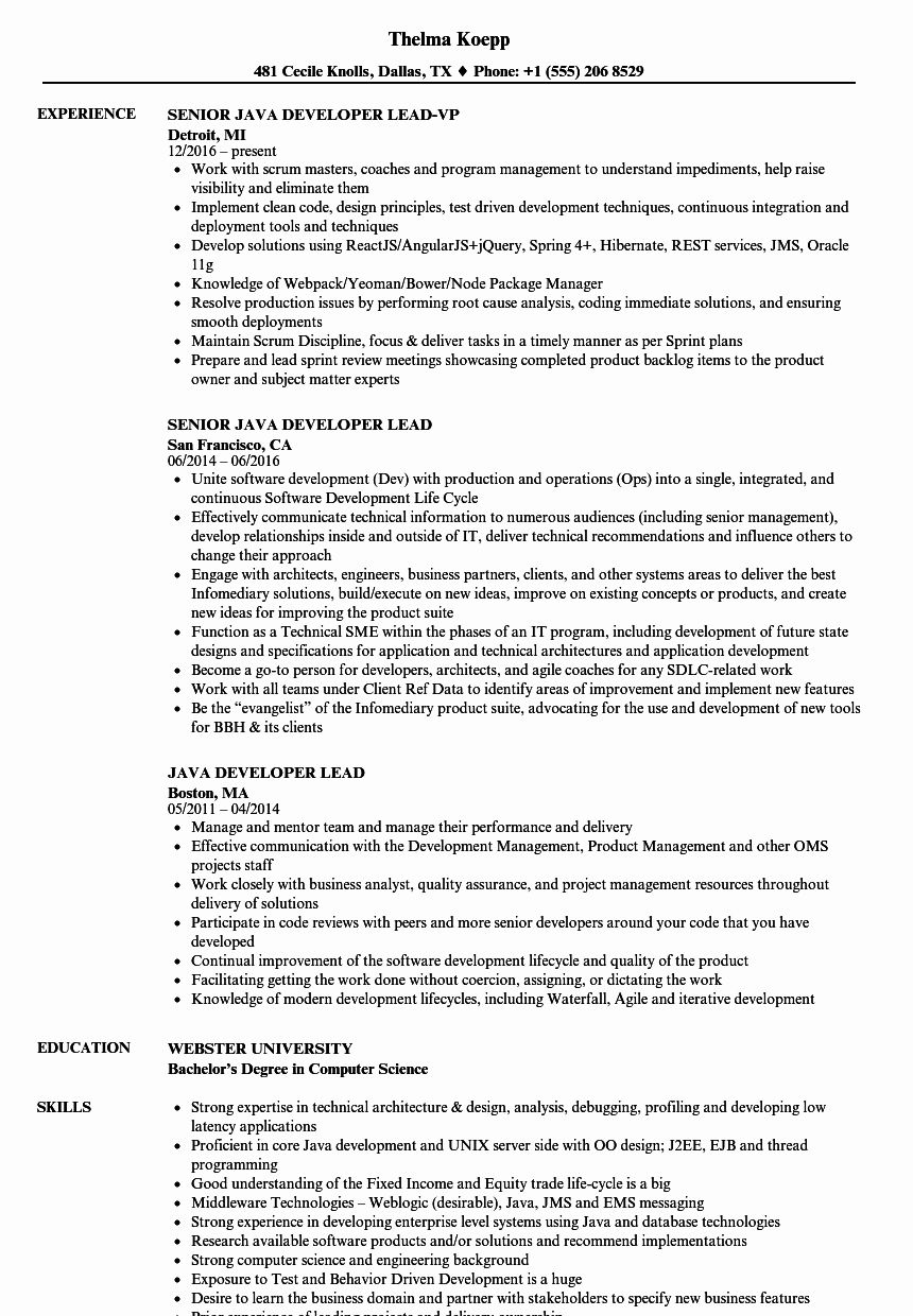 Java Production Support Resume Beautiful Java Developer Lead Resume Samples Blog