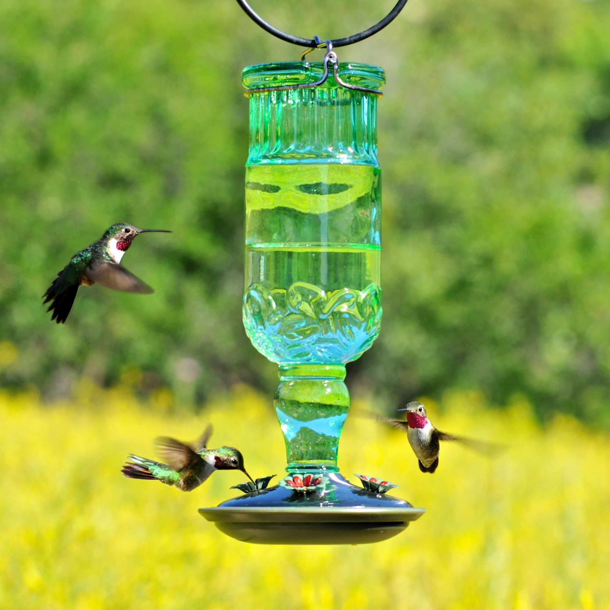 Green Antique Bottle Glass Hummingbird Feeder 24 oz