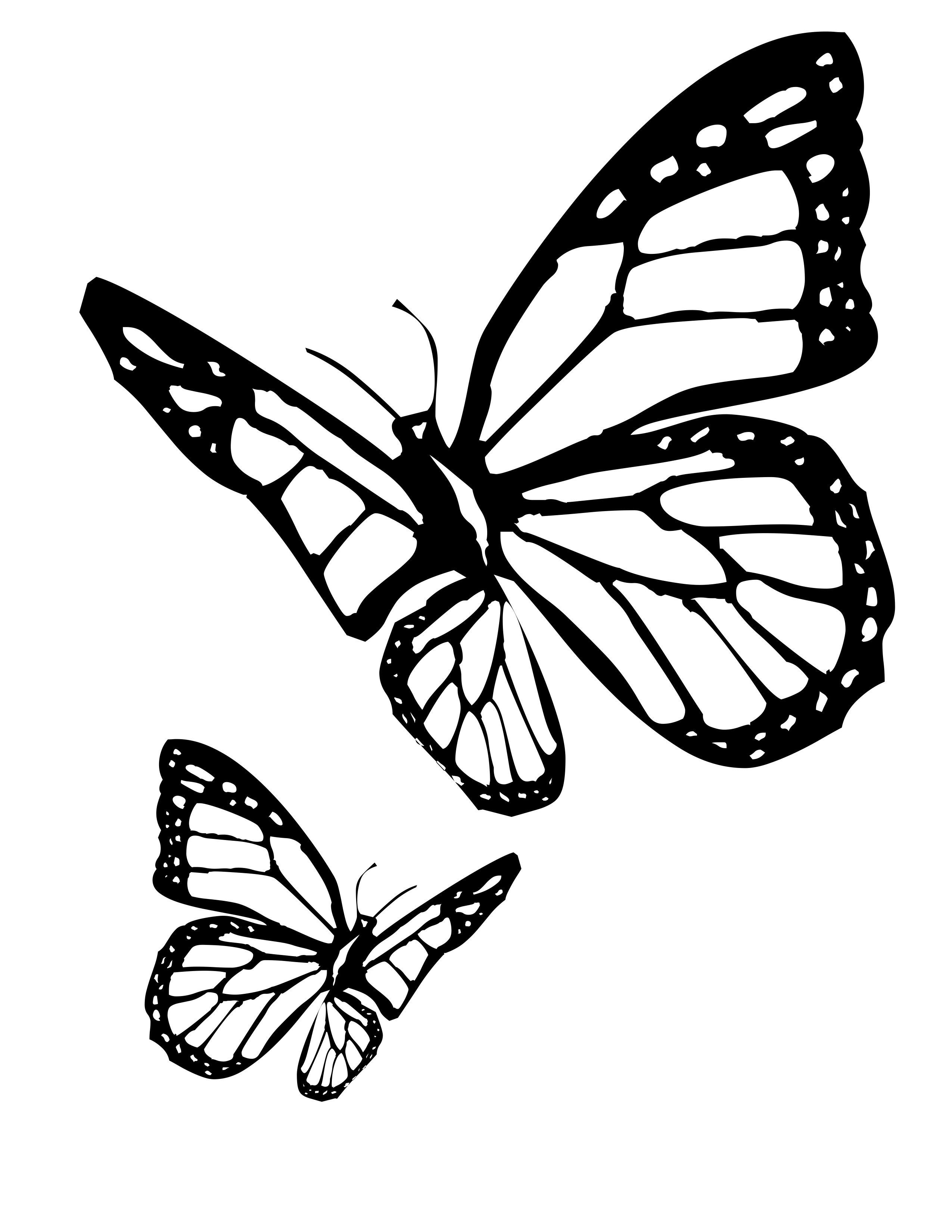 Cool Butterfly Coloring Pages For Kids In 2020 Butterfly Outline