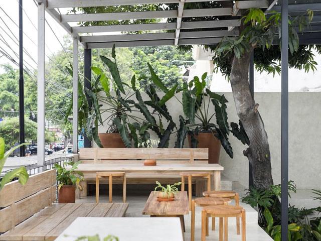 Garden coffee shop design ideas Thiết kế quán cafe sân