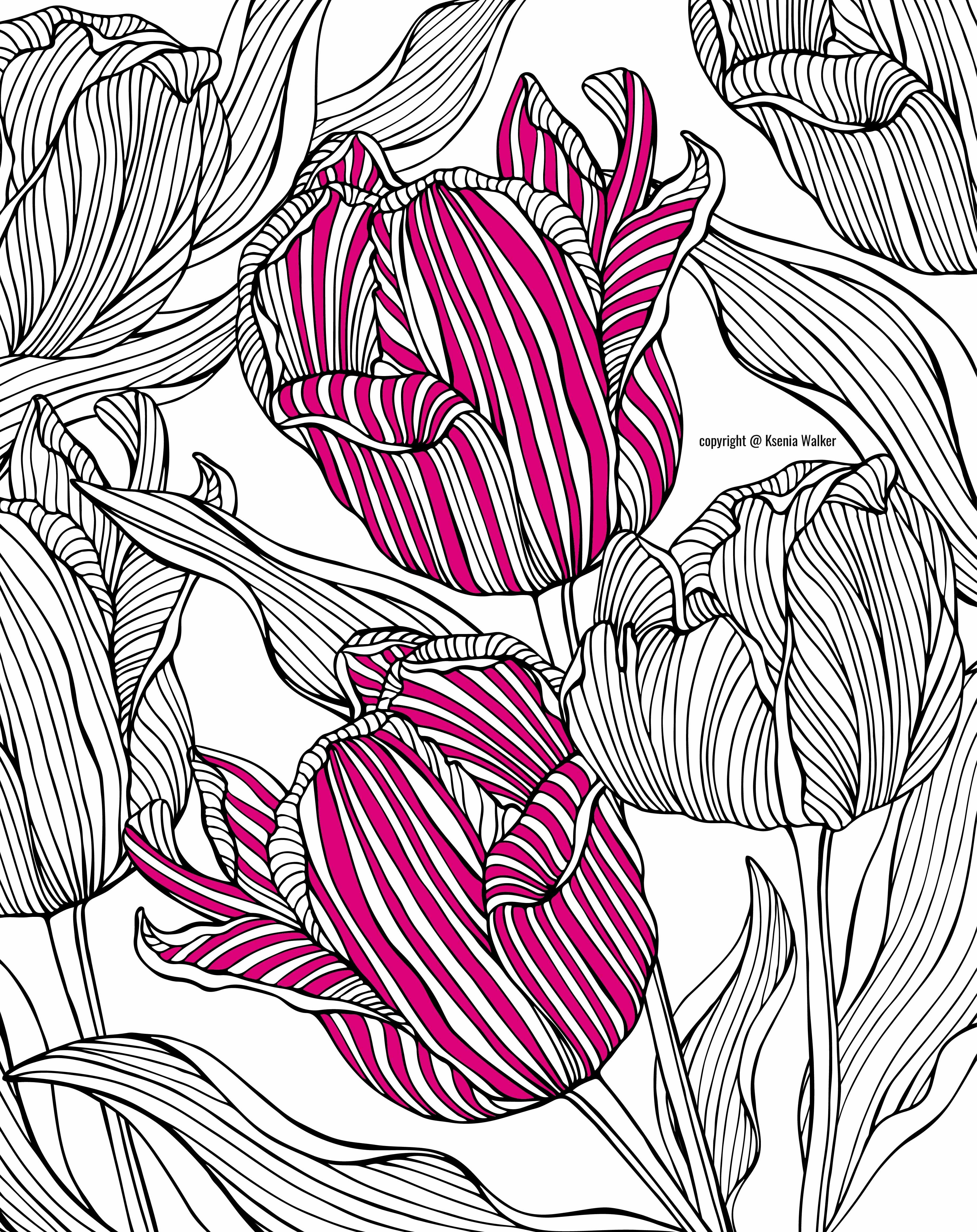 coloring book, coloring page, colouring, coloring for adults, adult ...