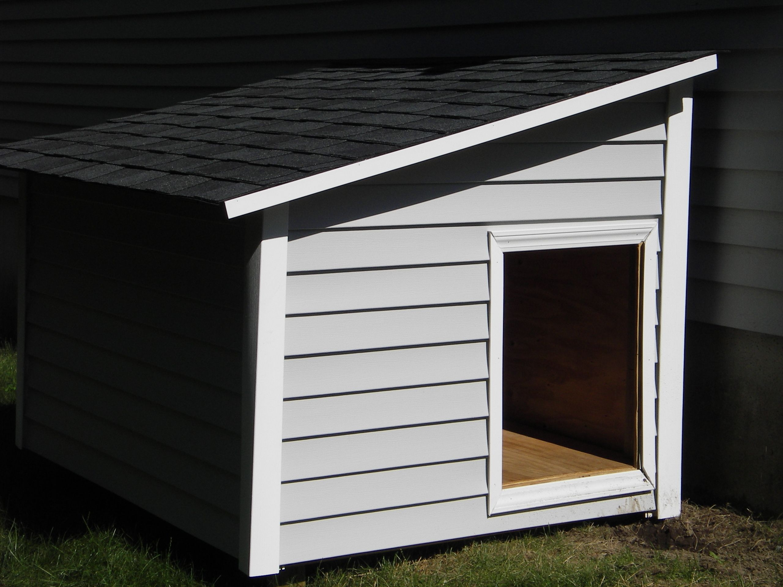 Our Boys Need A House Asap With Images Dog House Plans