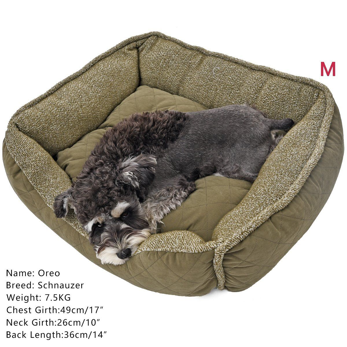 Pawz Road Pet Bed Dog Nesting House Removable Cushion