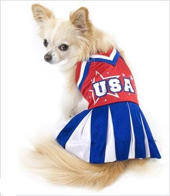 Olympic Cheerleader Costume For Dogs Size 1 8 L X 10 5 X 12