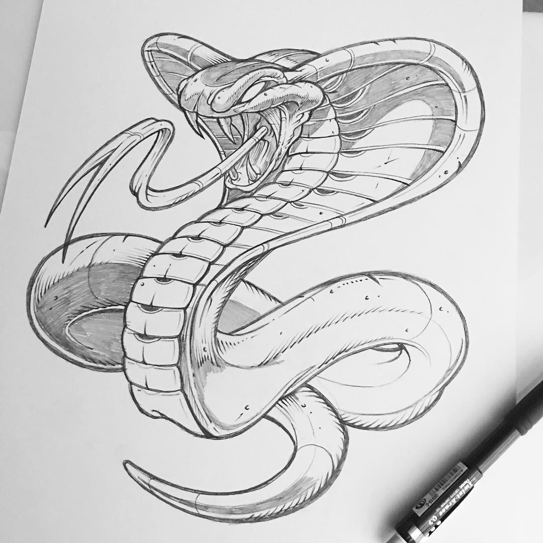 how to draw a snake head easy