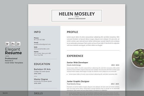 Professional  Clean ResumeCv Word Template Elegant Page Designs