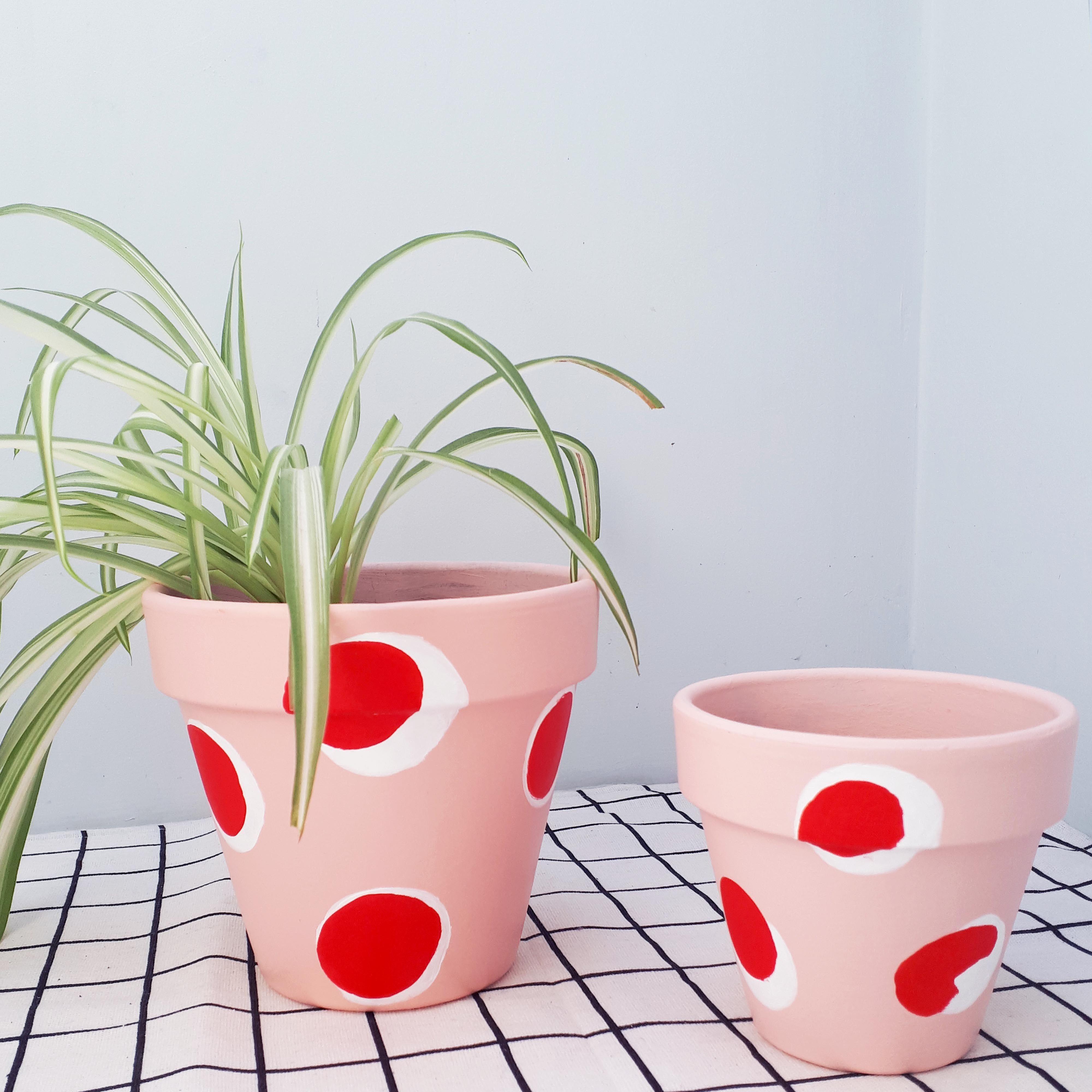 PINK POLKHA   LEAF of LONDON – Plant pot design