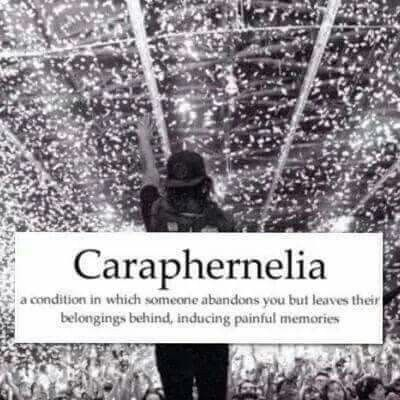 Caraphernelia Definition Wordsdefinitions Words To Remember