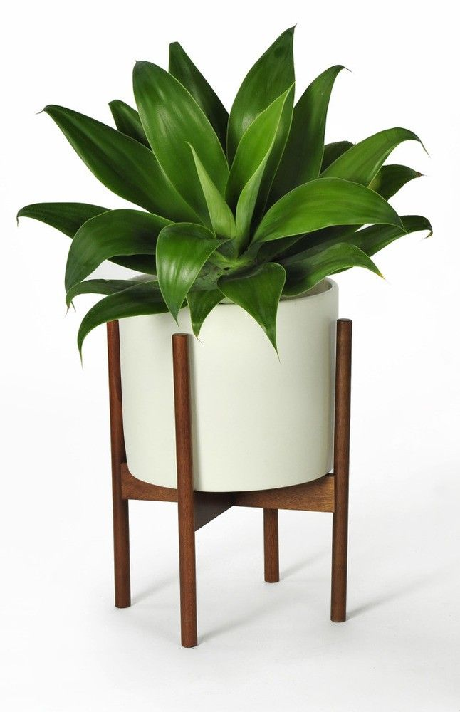 Modernica Small White Pot With Stand Case Study Planter White Planters Modern Planters