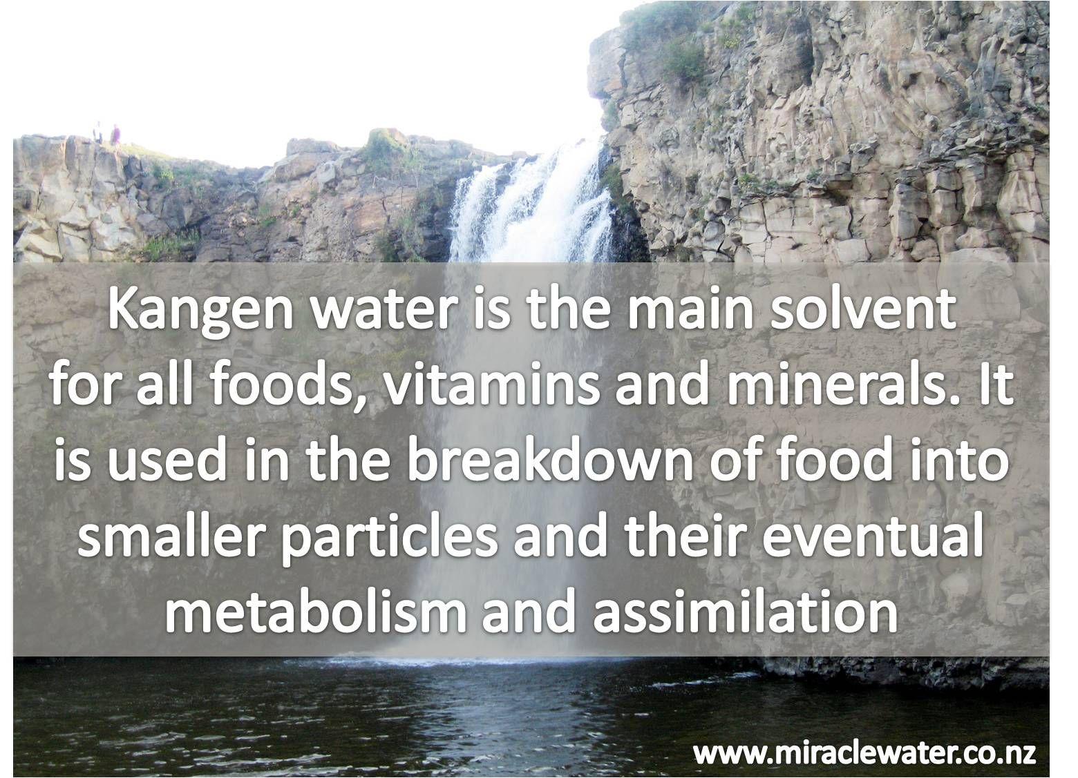 Www Miraclewater Co Nz Kangen Water Ionised Water Kangen